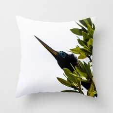 Anhinga Throw Pillow