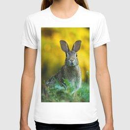 Rabbit | Lapin T-shirt