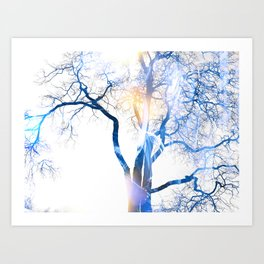 Tree Of Illusions Art Print