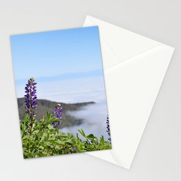 Foggy Lupines Stationery Cards