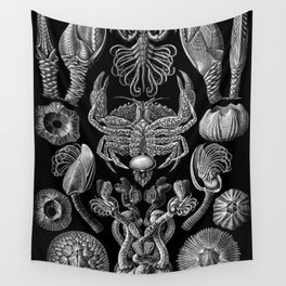 Ernst Haeckel Cirripedia Barnacles Crabs Wall Tapestry