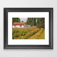 Out in the Country Framed Art Print