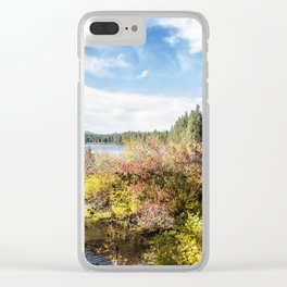 A Jumble of Color Clear iPhone Case