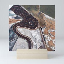 Saline Land Mini Art Print