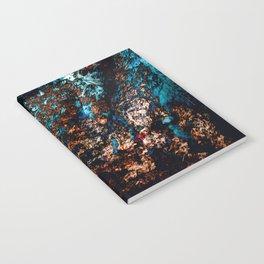 A Sudden Freeze Notebook