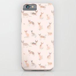 Sphynx Cats iPhone Case