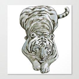Zabu White Tiger Canvas Print