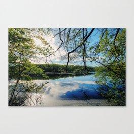 Pond Views Canvas Print