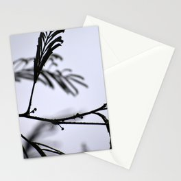 Black&White Stationery Cards