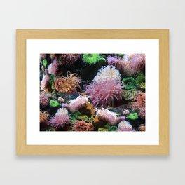 Waterworks Framed Art Print