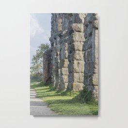 Rome,  Aqueduct Park Metal Print