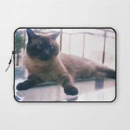Bibi_Cat Laptop Sleeve