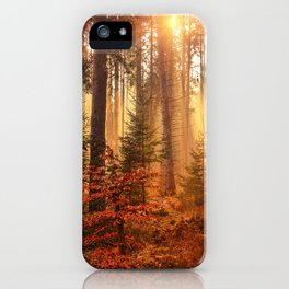 Golden Hour in the Forest iPhone Case