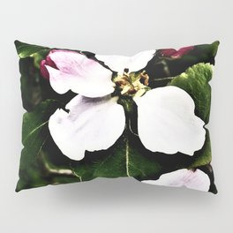She Lights Up The Night In The Apple Orchard Pillow Sham