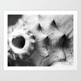 Listen to the Ocean Art Print