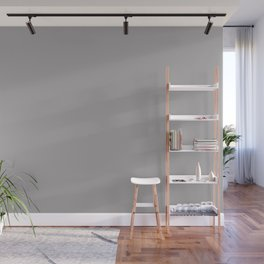 Light Pastel Gray Solid Color Pairs with Sherwin Williams Mantra 2020 Forecast Colors Mystical Shade Wall Mural