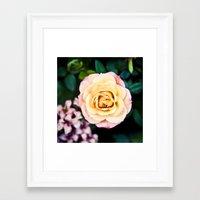peach Framed Art Prints featuring peach by dgpmiami