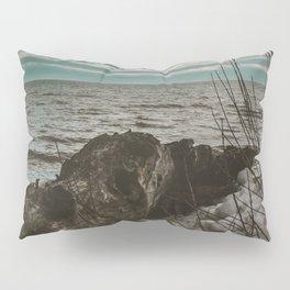 Drift Away Pillow Sham