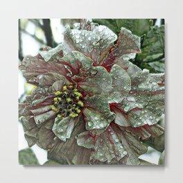 Floral ArtStudio - amazing flowers 1216 Metal Print