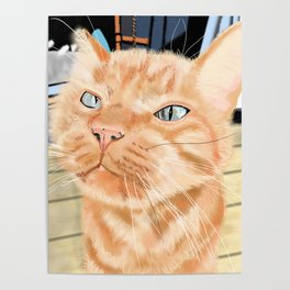 Sniffy Ginger Tabby Cat Poster