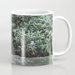 Streams of Living Water 2 Coffee Mug