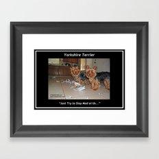 Yorkshire Terrier - Attitude is Everything Framed Art Print
