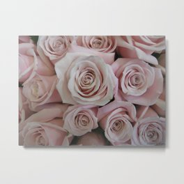 Blush Pink Tea Roses Metal Print