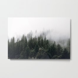 Into the Wild V Metal Print