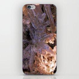 Encasement iPhone Skin