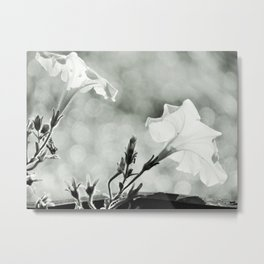 Petunias B&W Metal Print