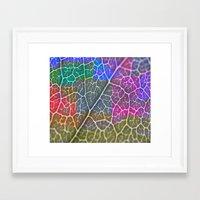 leaf Framed Art Prints featuring Leaf  by Latidra Washington