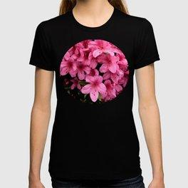 Asiatic Azaleas T-shirt