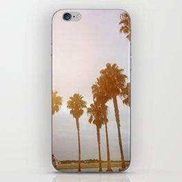 Palm Tree Road iPhone Skin