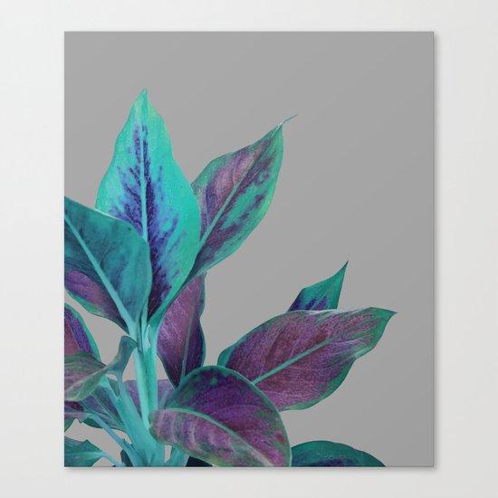 Still Nature #society6 #buyart #decor Canvas Print