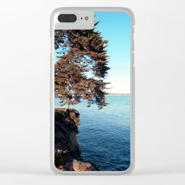 Cliffs Clear iPhone Case