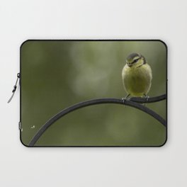 watching a fly Laptop Sleeve