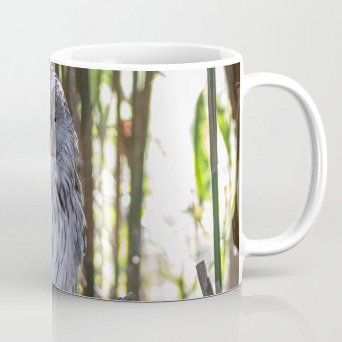 Ural owl resting on a branch Coffee Mug