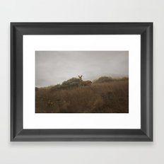 Morning Deer Framed Art Print