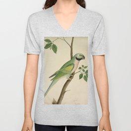 Green Parrot - 19th Century Classical Indian Art Unisex V-Neck