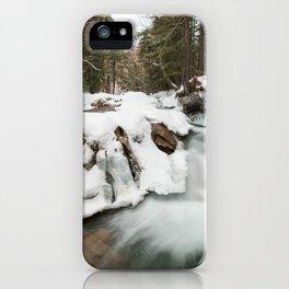 NH iPhone Case