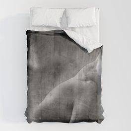 A night so still Comforters