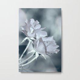 Twin White Roses Metal Print