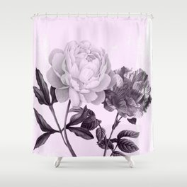 roses in purple and pink Shower Curtain