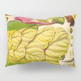 Illustration Of Himalayan Plants Vintage Scientific Botanical Illustration Pillow Sham