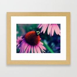 Spring Crawl Framed Art Print