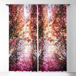 Pink Fire Blackout Curtain