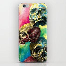 Colorful Skulls iPhone Skin