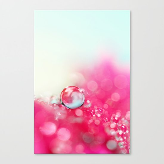 A Drop with Raspberrys and Cream Canvas Print