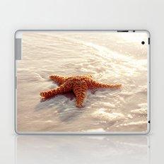 Sugar Starfish I Laptop & iPad Skin