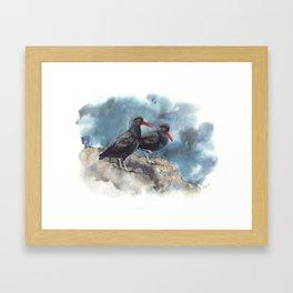 Twitterpated Oystercatchers Framed Art Print
